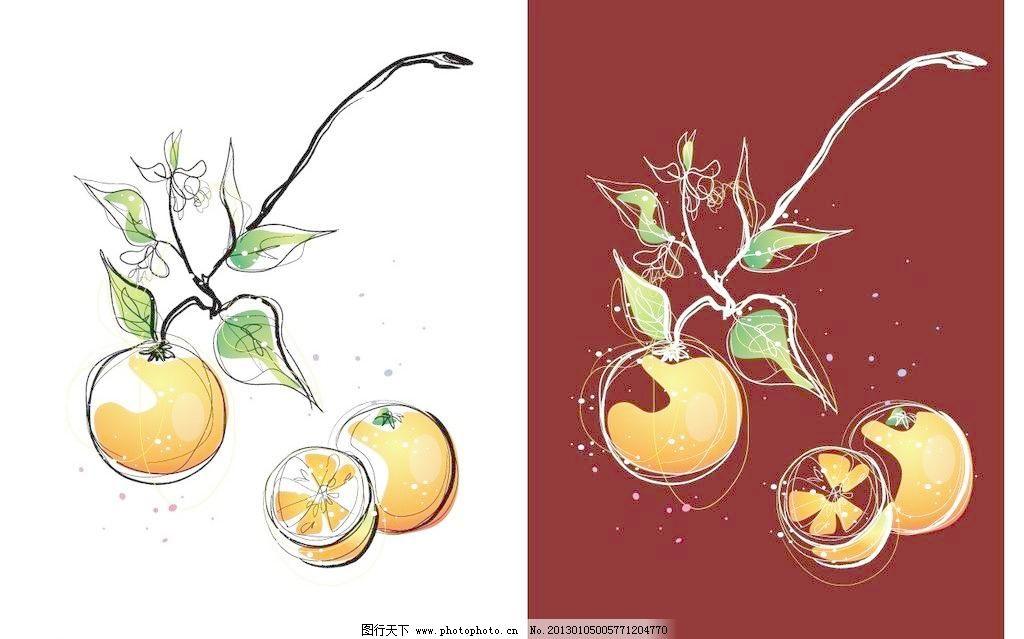 手绘橙子图片