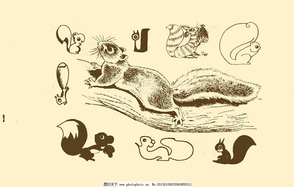 动物图案 松鼠 卡通 动物 纹样 图案 白描 简笔画 儿童画 小松鼠 榛子