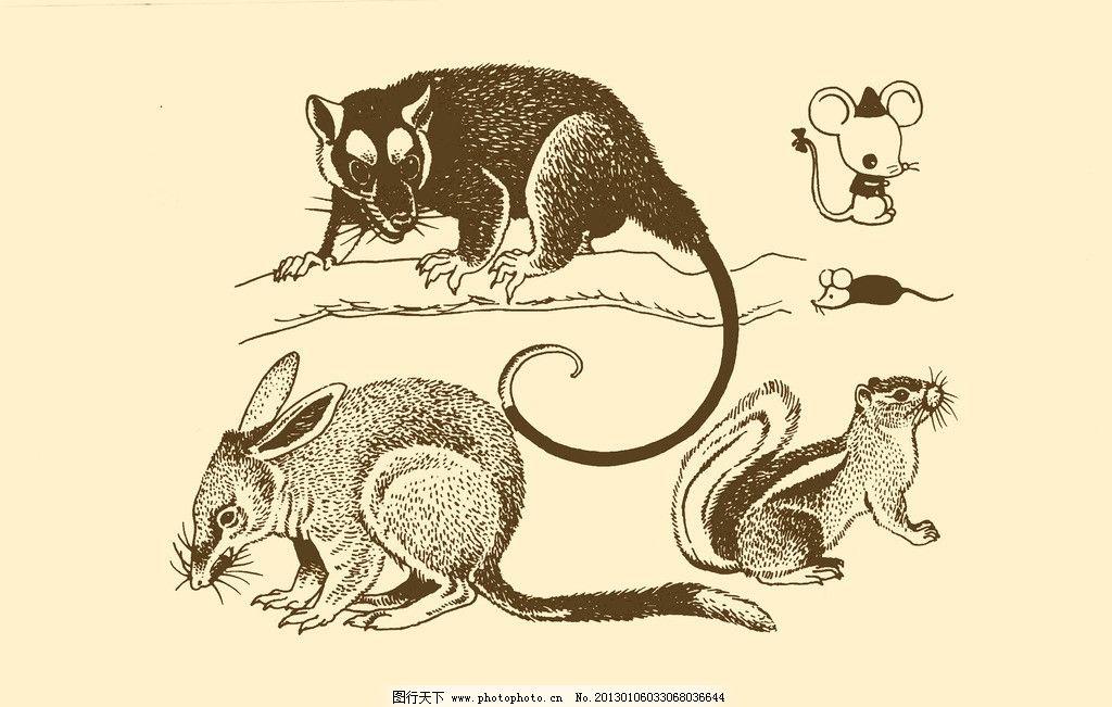 动物图案 老鼠 卡通 动物 纹样 图案 白描 简笔画 儿童画 鼠 鼠年 psd