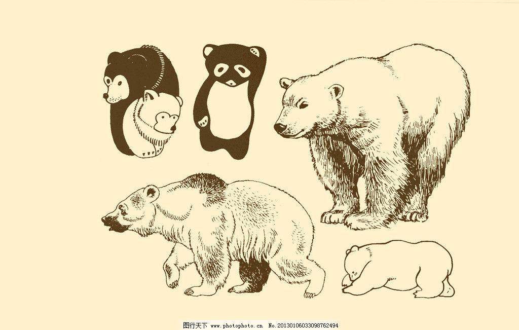 动物图案 熊图片
