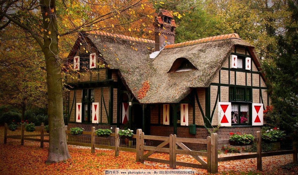 林中小屋 野外 草地 落叶 别墅 自然 森林 世外桃源 隐居 园林建筑