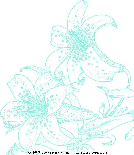 百合花卉简笔画图片