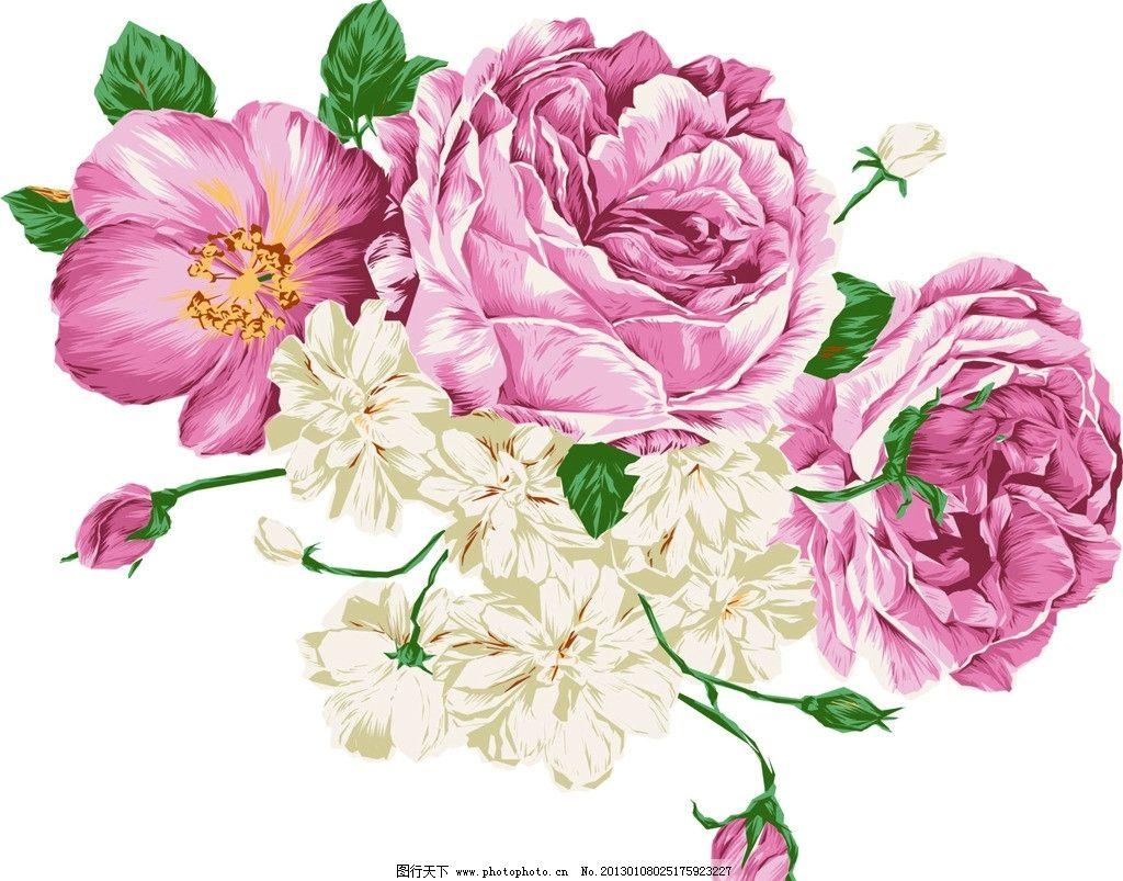 国画牡丹 矢量素材 手绘 水彩 花朵 牡丹 叶子 矢量 花卉 鲜花 牡丹花