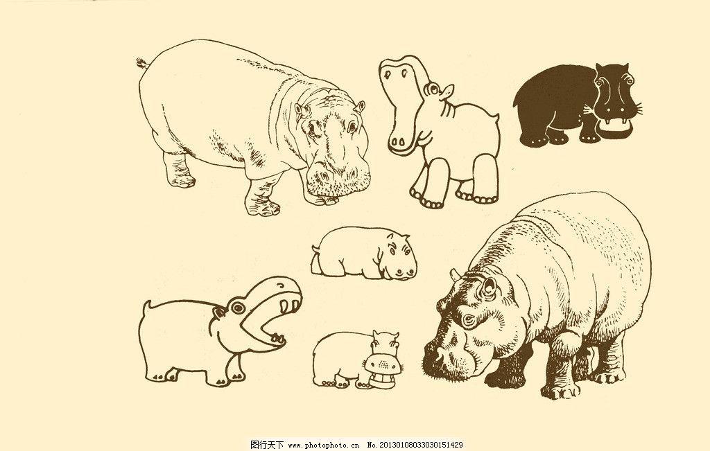 动物图案 河马图片