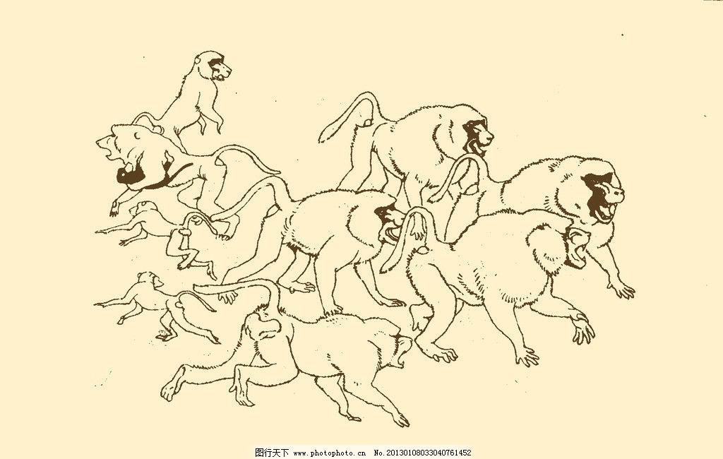 动物图案 猴 卡通 动物
