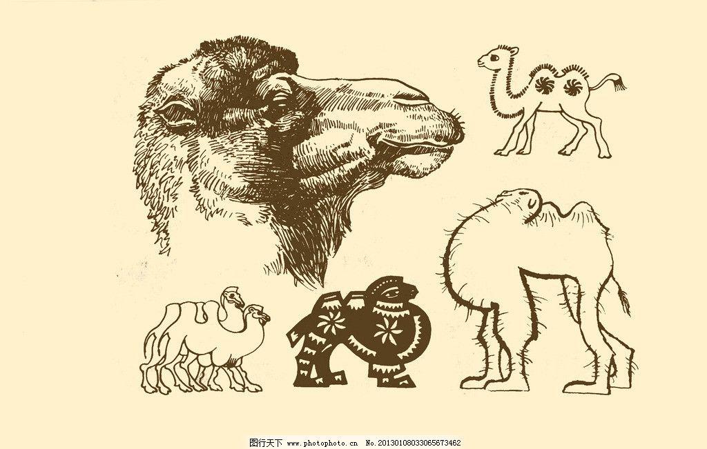 动物图案 骆驼 卡通 动物 纹样 图案 白描 简笔画 儿童画 psd分层素材