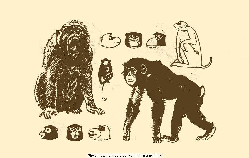 儿童动物猴子画