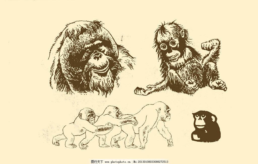 动物图案 猴 卡通 动物 纹样 图案 白描 简笔画 儿童画 猴子 psd分层