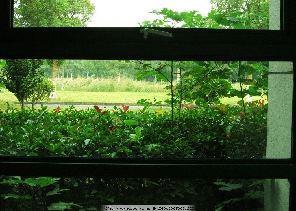 窗外的风景图片