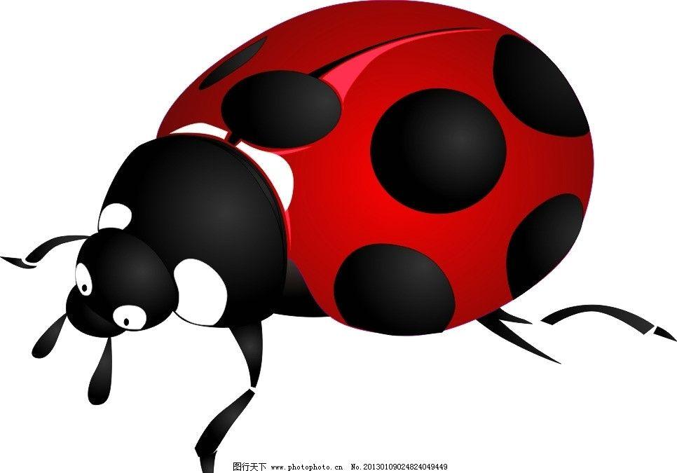 甲虫 昆虫 瓢虫 卡通 cdr素材 生物世界 矢量 cdr