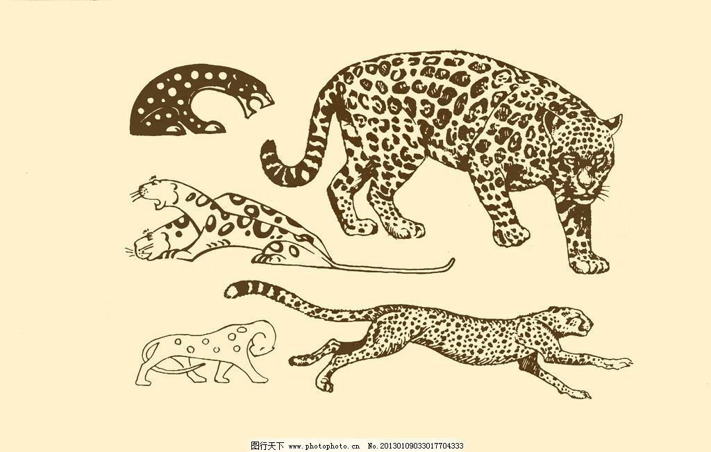 动物图案 豹 卡通 纹样 白描 简笔画 儿童画 豹子 猎豹 源文件