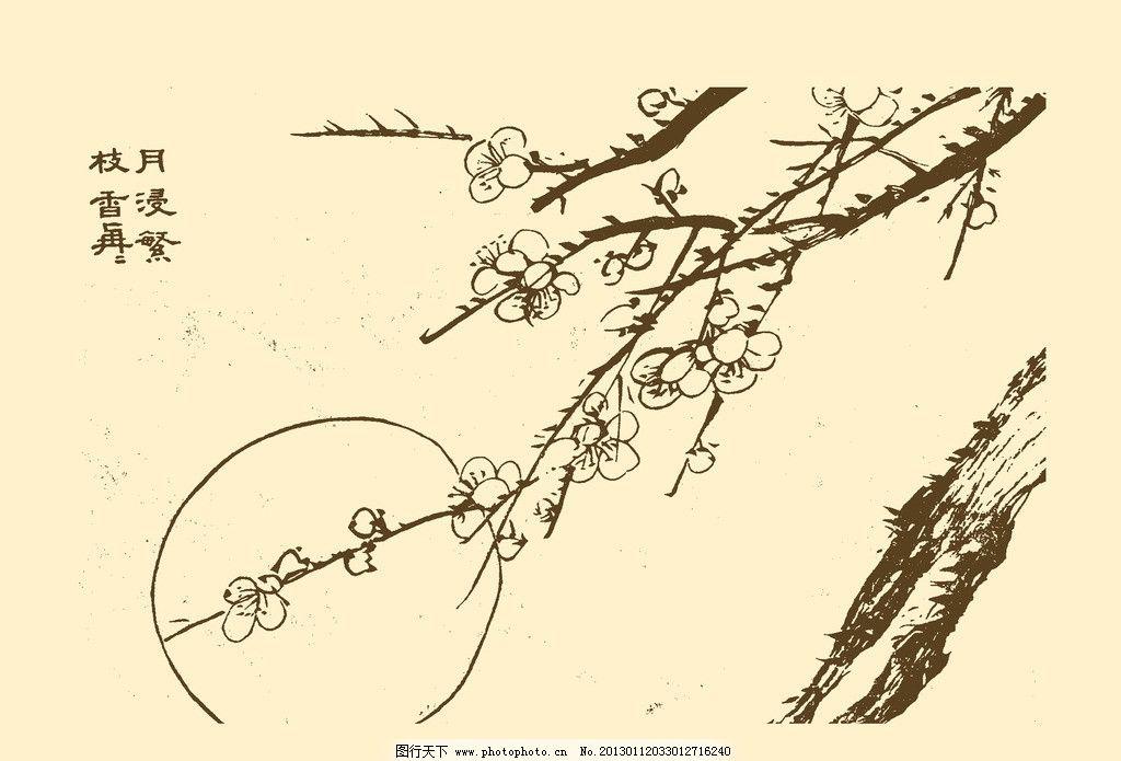 芥子园画谱 梅花图片