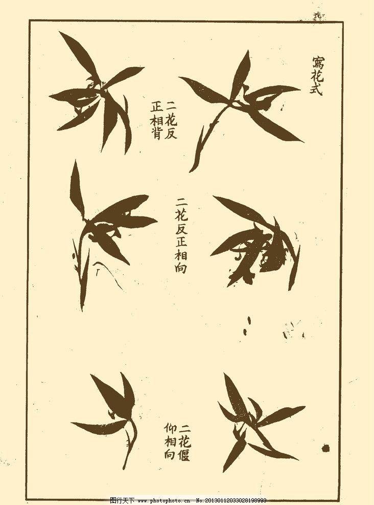 芥子园画谱 兰花 中国画 书画 国画 白描 绘画 美术 兰 兰草 画法