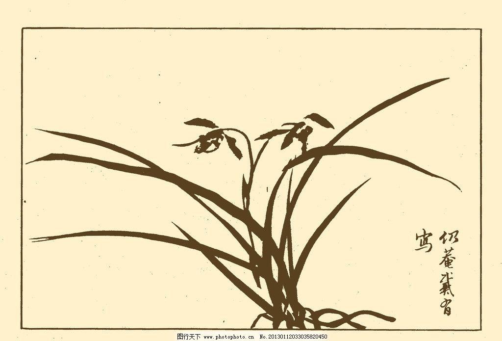 芥子园画谱 兰花 中国画 书画 国画 白描 绘画 美术 兰 兰草 psd分层