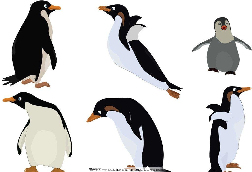 企鹅 可爱的企鹅 手绘 有趣 南极 南极生物 手绘插画 卡通图案
