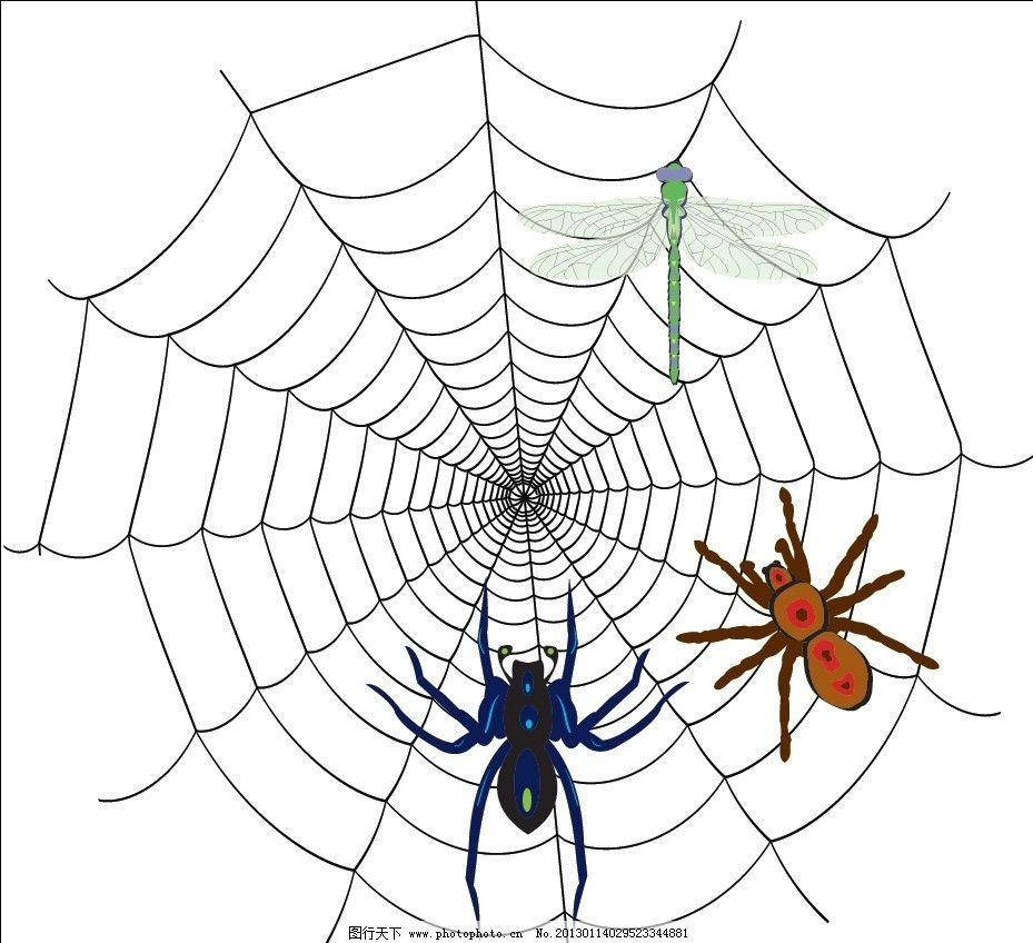 蜘蛛与蜘蛛网 蜘蛛 蜘蛛网 蜻蜓 卡通动物 卡通 广告设计 矢量 ai