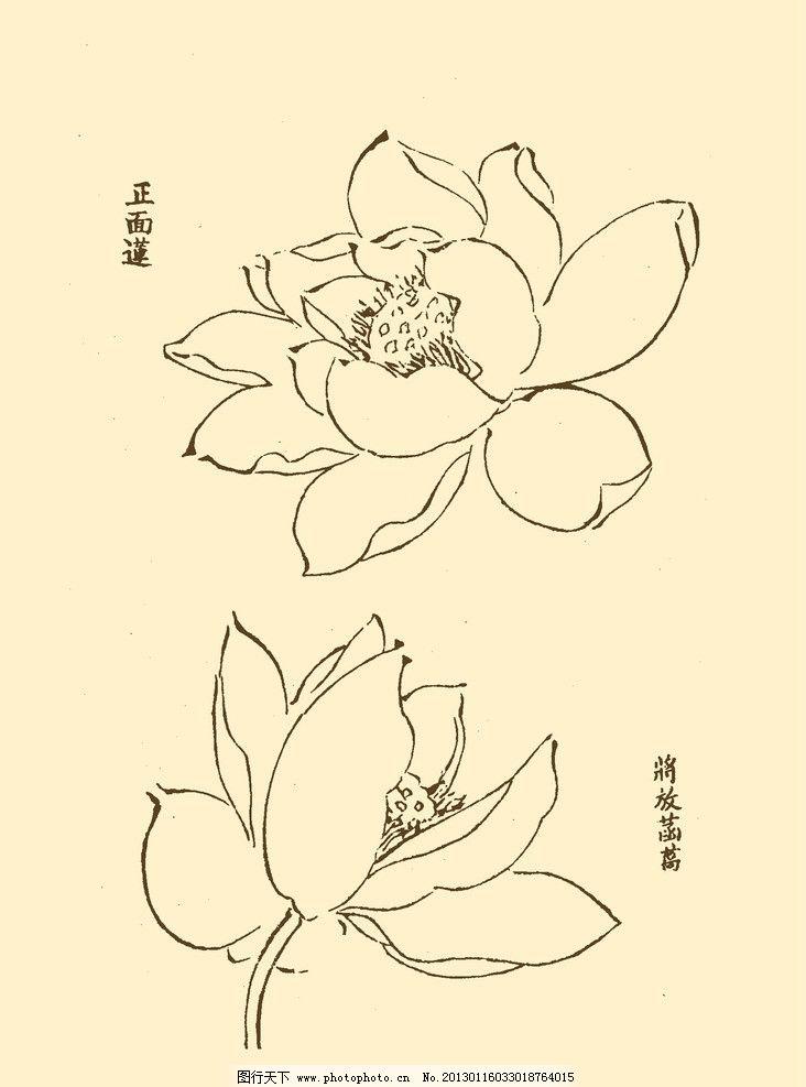 芥子园画谱 花卉 山水 国画 中国画 水墨画 写意画 荷花 莲花 psd分层