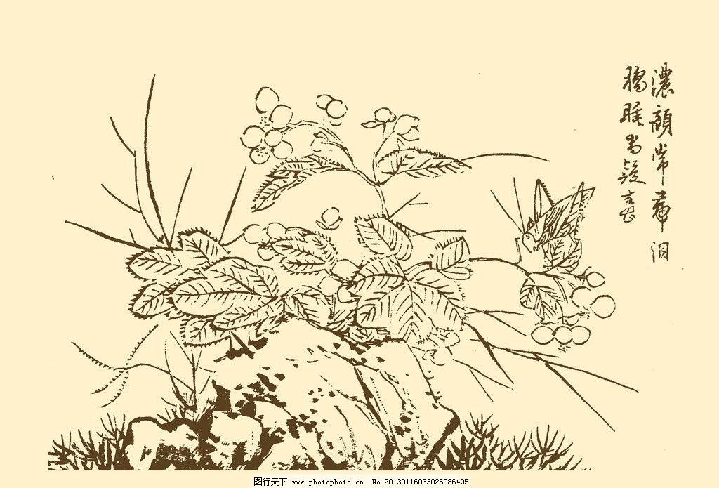 芥子园画谱 花卉 山水 国画 中国画 水墨画 写意画 花草 植物