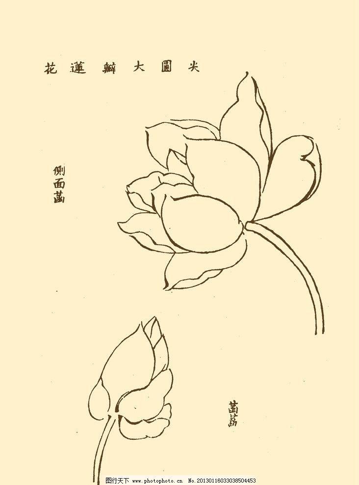 芥子园画谱 花卉 山水 国画 中国画 水墨画 写意画 荷花 莲花