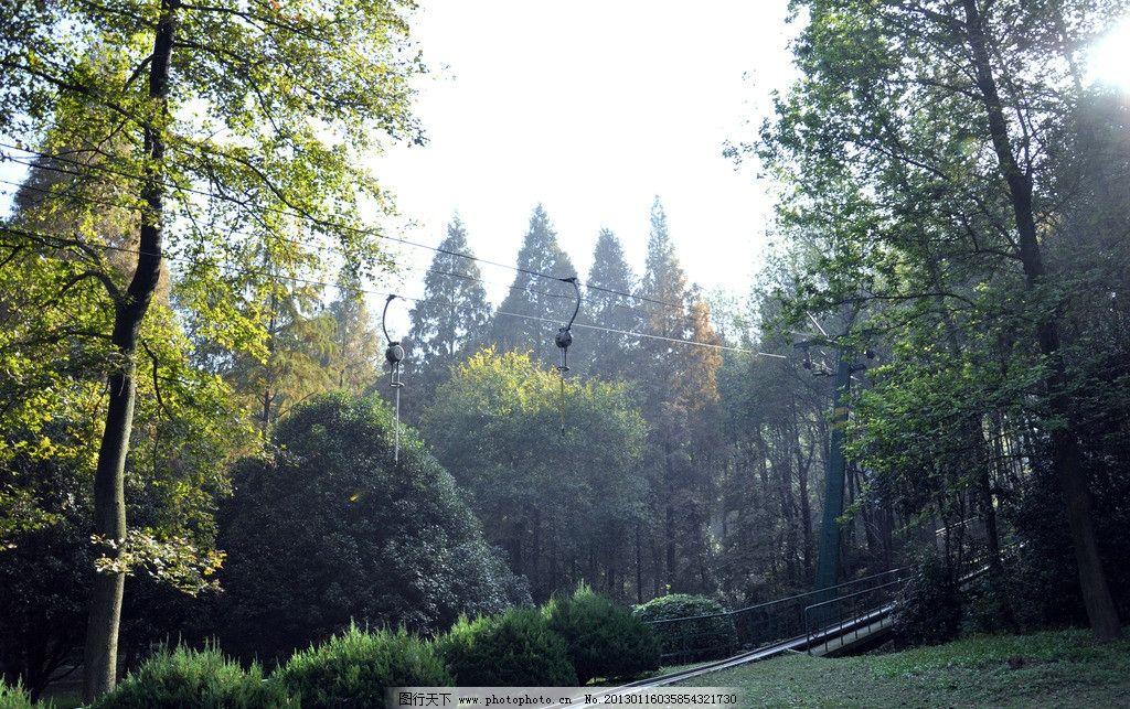 武汉磨山风景区索道 武汉 磨山风景区 索道 树林 阳光 绿色 绿之悠悠