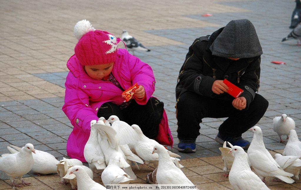 小孩喂鸽子图片