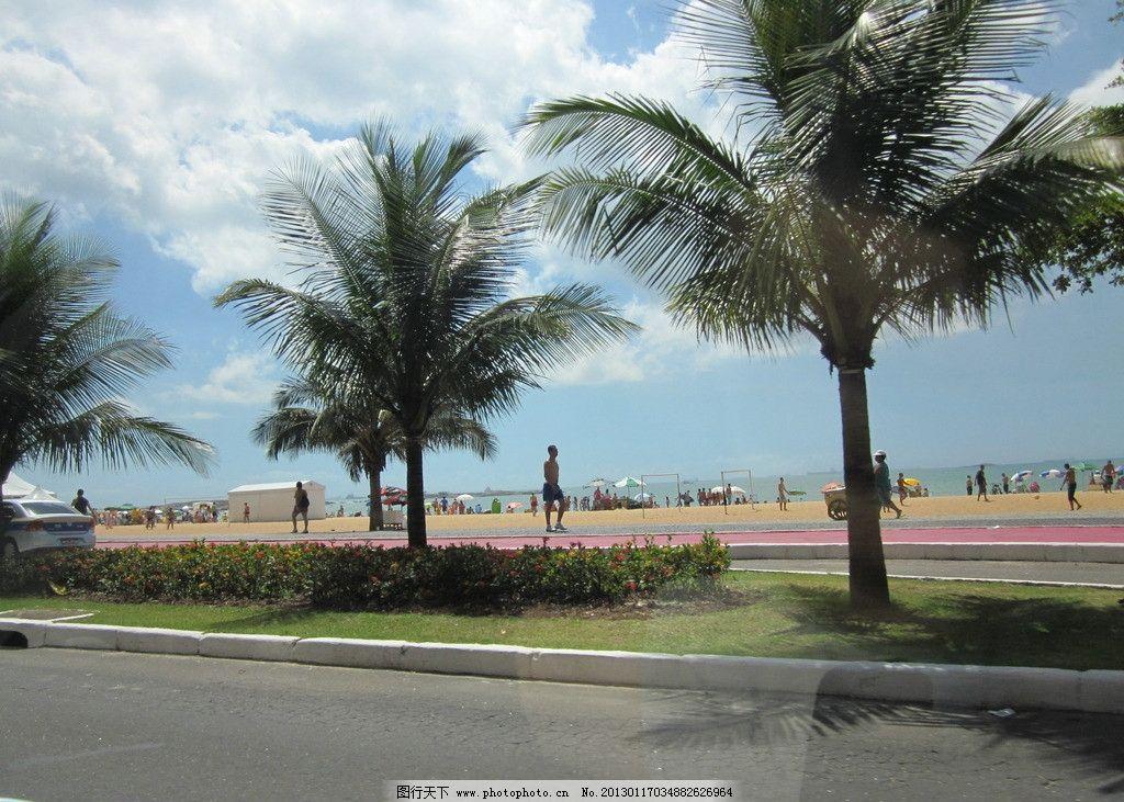 沙滩 海洋 近海 海岸植物 椰子树 金色海滩 金色沙滩 阳光照耀下的