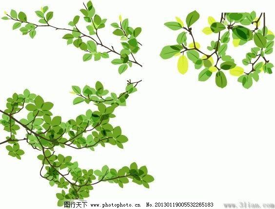 绿色植物免费下载 矢量图 其他矢量图