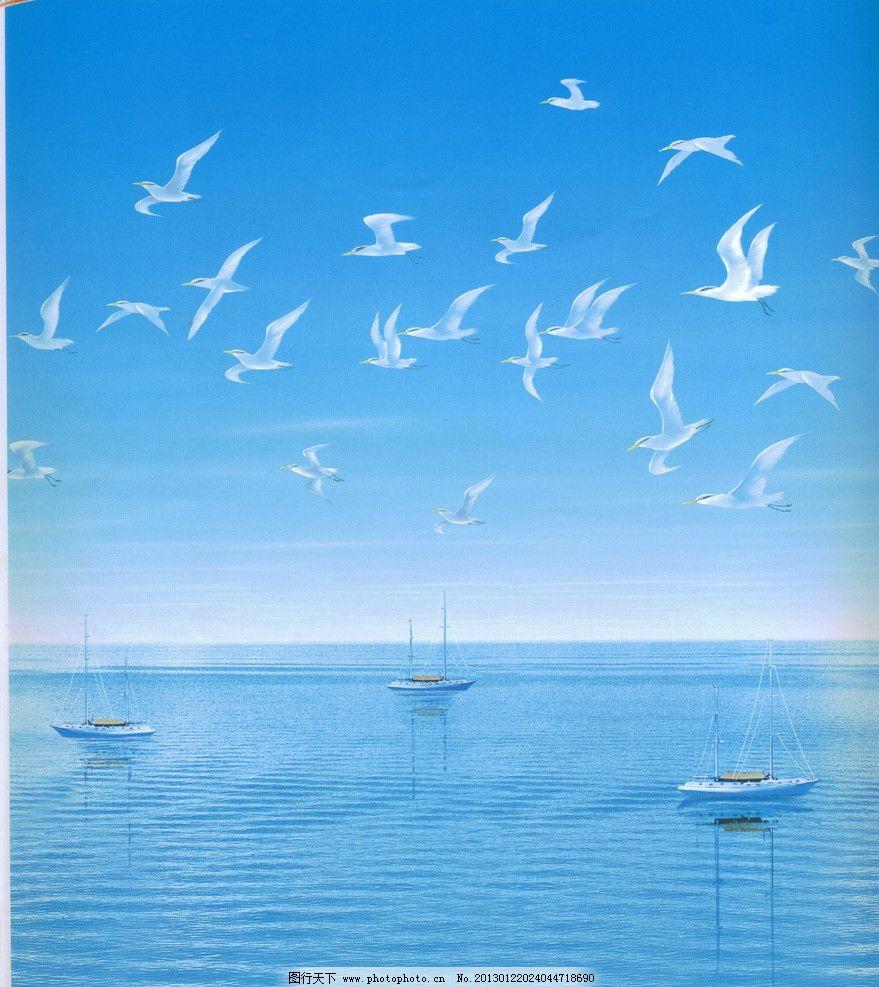 海鸥飞翔图片