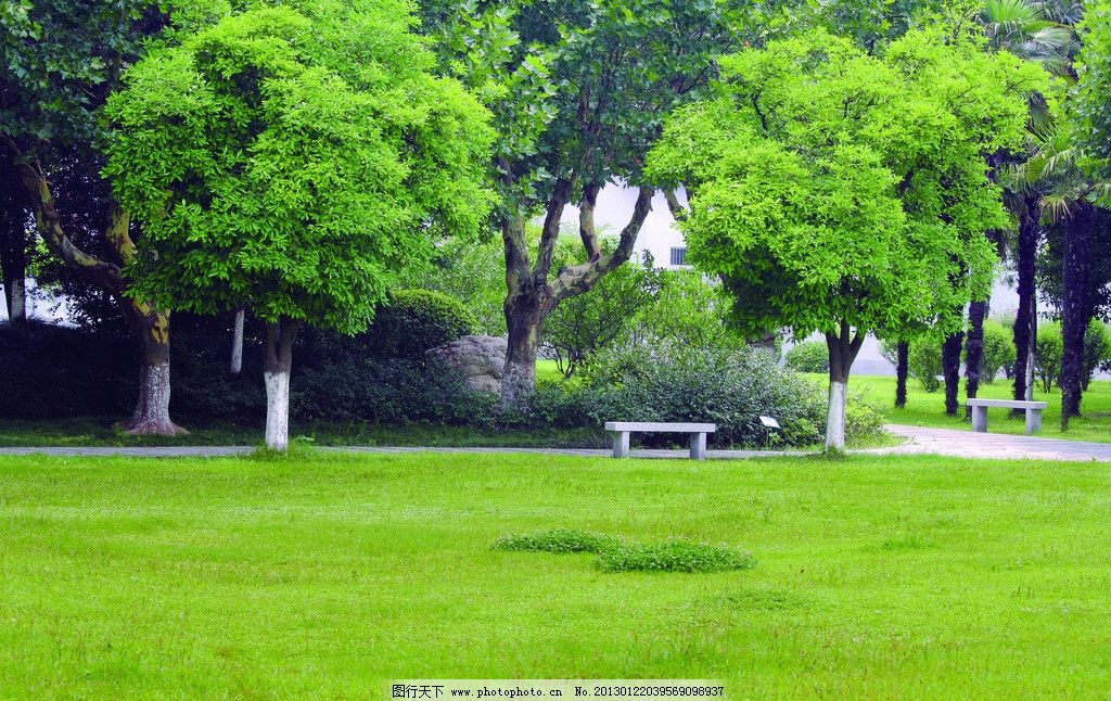 园林 公园 风景区 小区 绿化 草地 草坪 树林 郊外 郊区 园林建筑