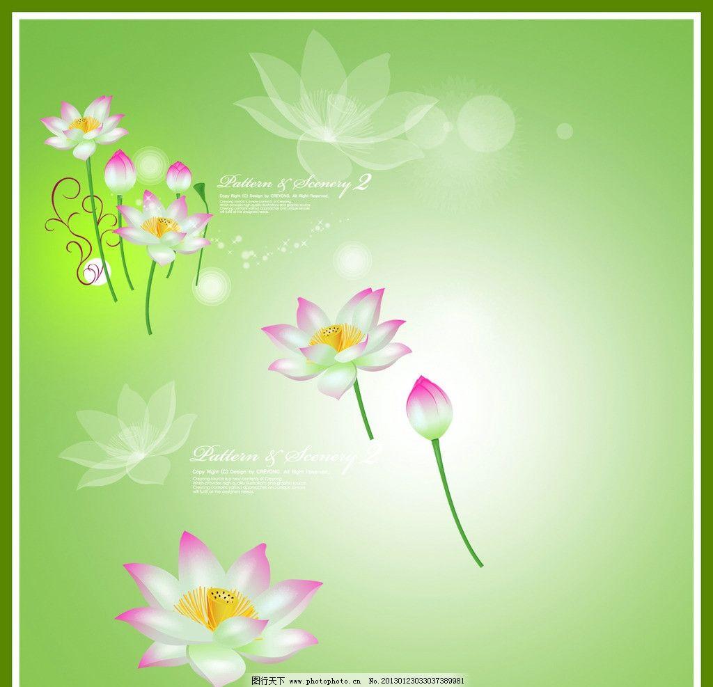 荷花 鲜花 绿色背景 梦幻 星星 紫色鲜花 psd分层素材 源文件 100dpi