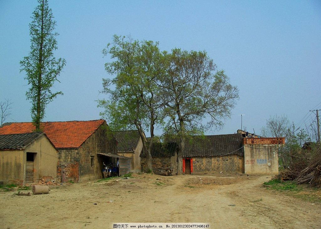 农村老房子 农村现状 老房屋 破房子 农民房子 乡村 小路 树木 杂草