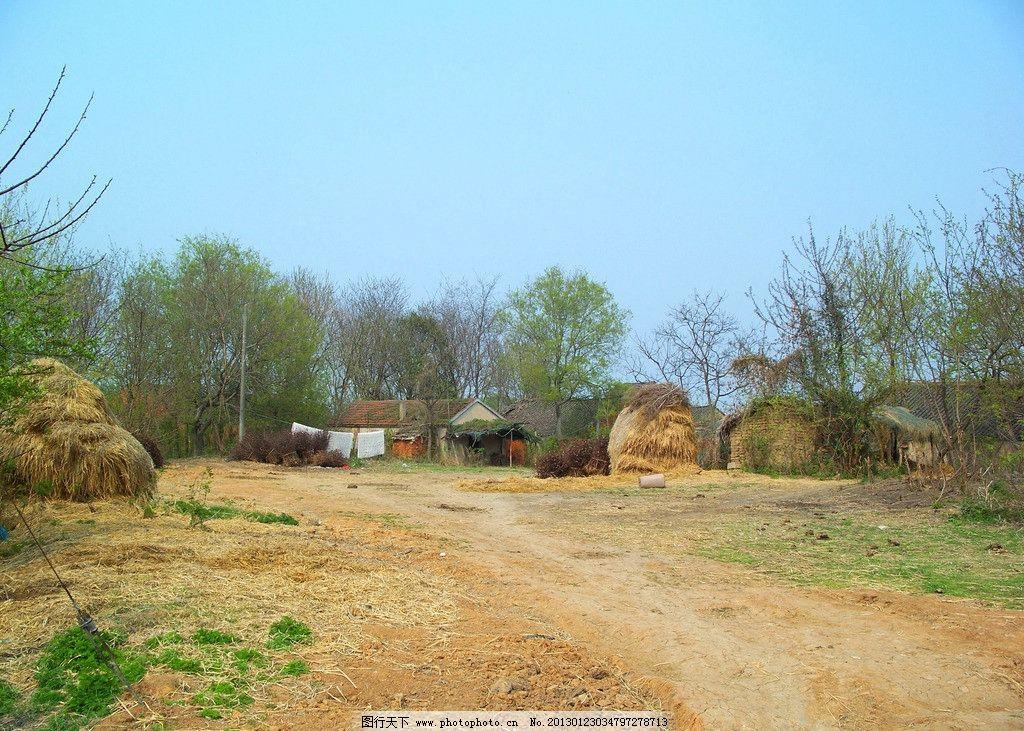农村现状 老房屋 破房子 农民房子 乡村 小路 树木 杂草 土路 泥路