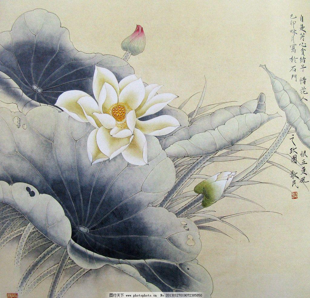 夏泽荷风 美术 中国画 工笔画 花鸟画 花木 花朵 荷花 国画艺术