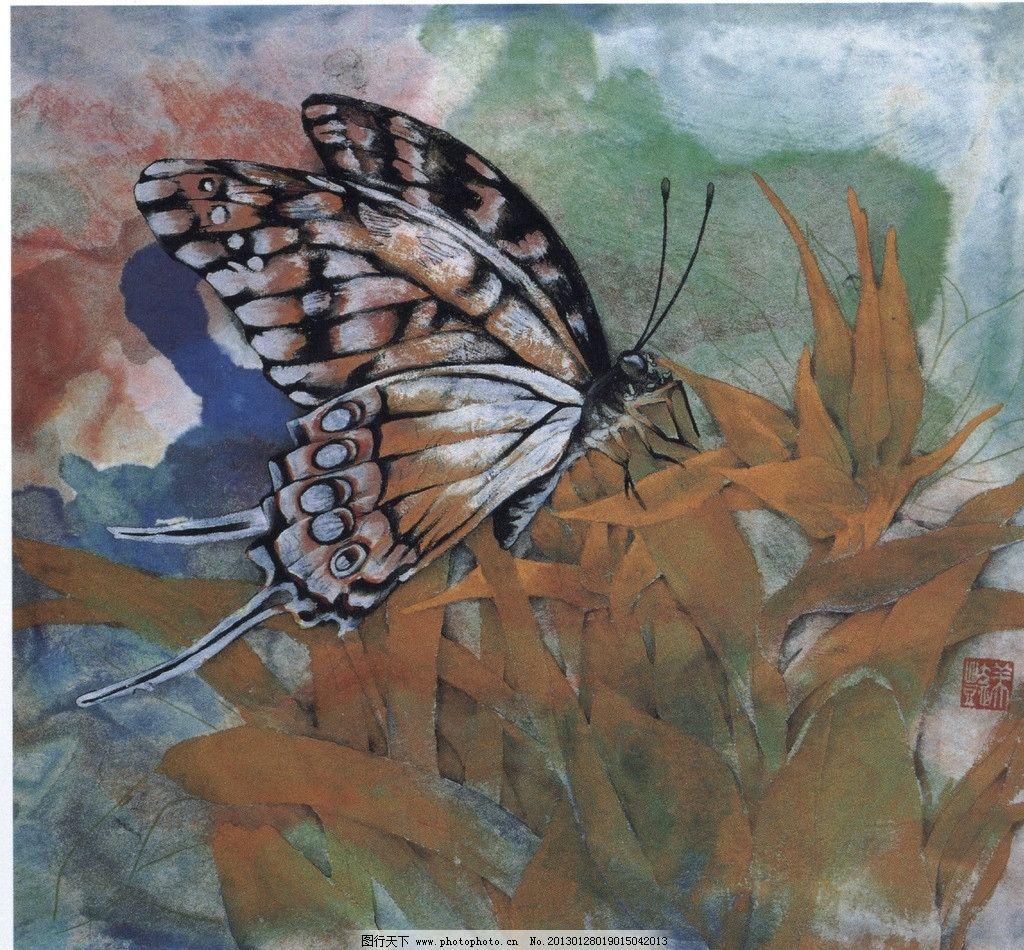 蝴蝶美术画画图片