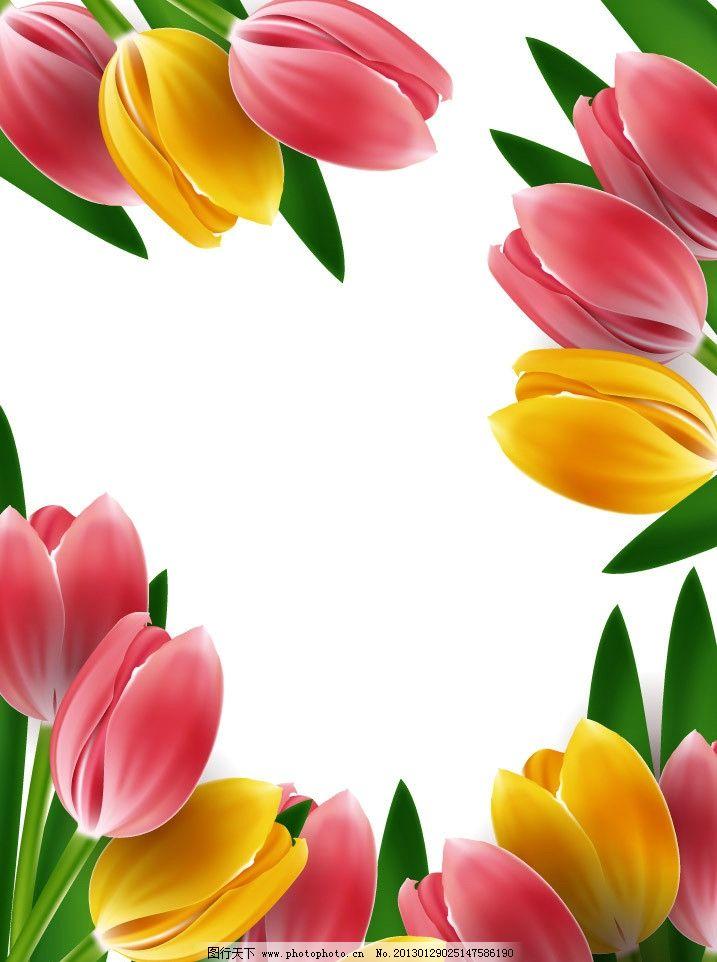 郁金香 鲜花 花朵 花卉 盛开 美丽 灿烂 手绘 背景 矢量 草地绿草花草