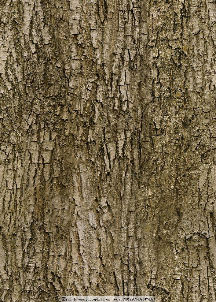 树皮木纹贴图图片
