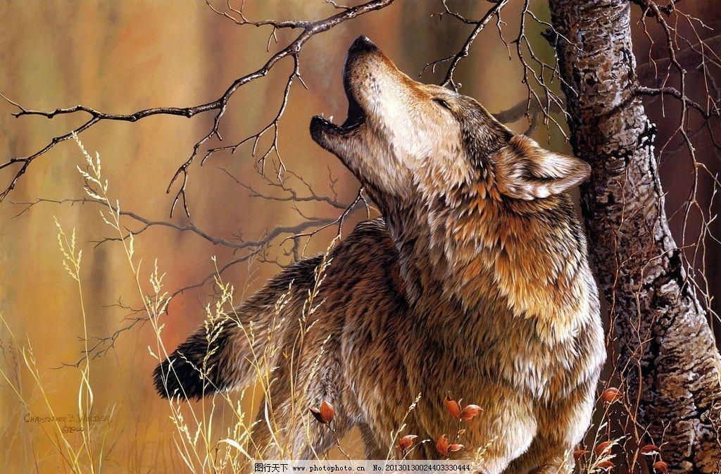 狼啸 狼 野外 树木 狼嚎 树干 野生动物 生物世界 设计 400dpi jpg
