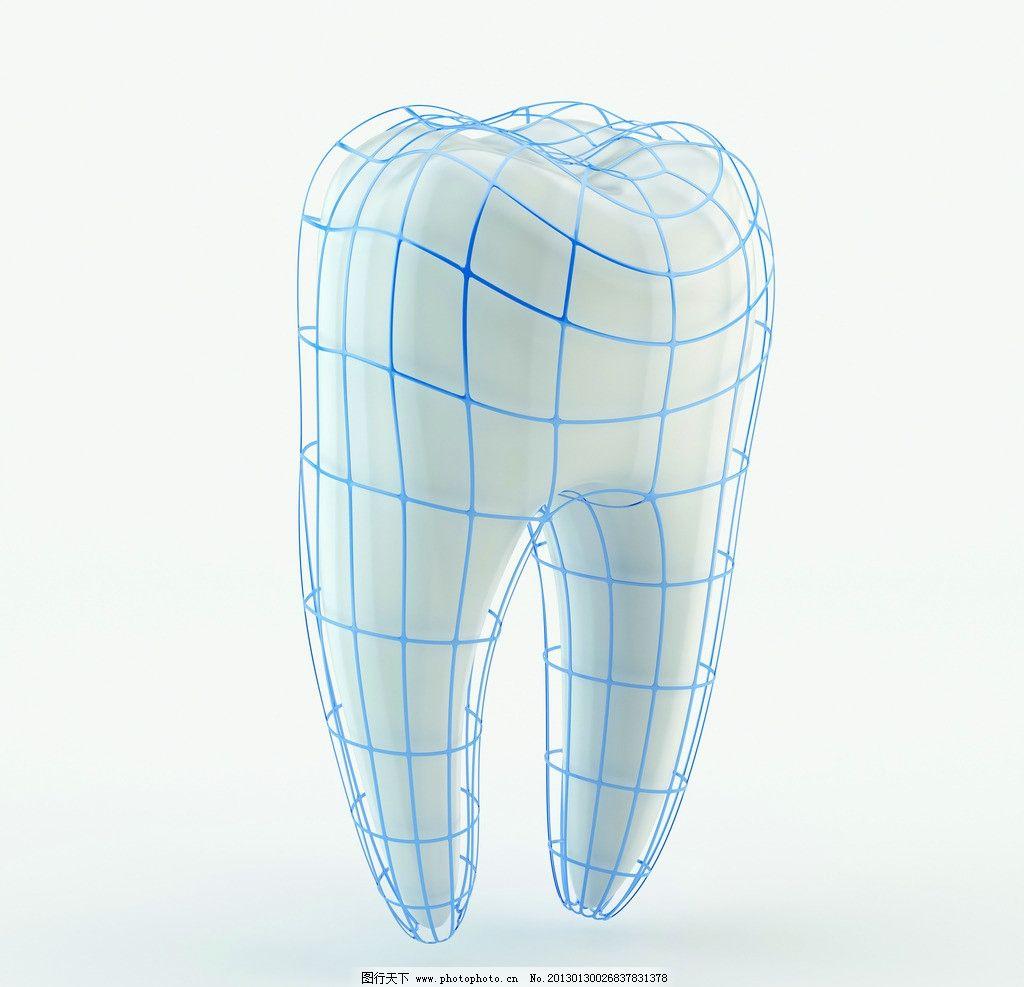 牙齿 贝齿 结构图 3d牙齿 医疗护理 现代科技 设计 300dpi jpg