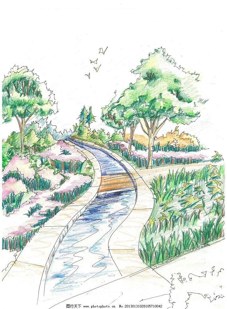 景观手绘 乔木 灌木 花卉 植被设计 小桥流水 活水 水景