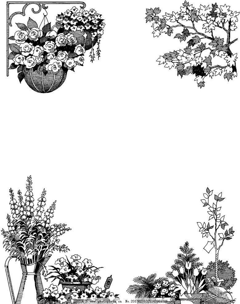 手绘花卉 手绘植物 树木 枝叶 花风 花草 生物世界 设计 300dpi tif