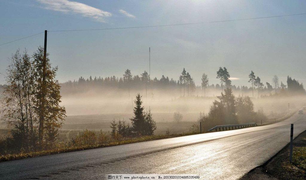 大雾弥漫 唯美雾境高清 阳光 落叶 森林 桌面壁纸 早晨 摄影