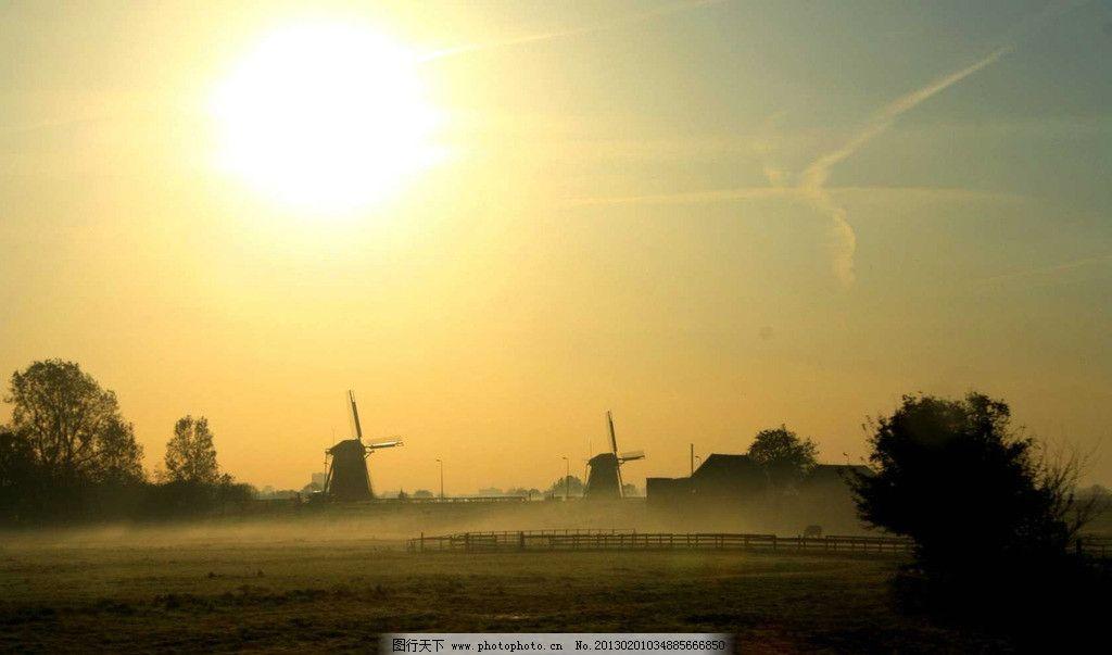大雾弥漫 阳光 唯美雾境高清 落叶 森林 桌面壁纸 早晨 自然风景