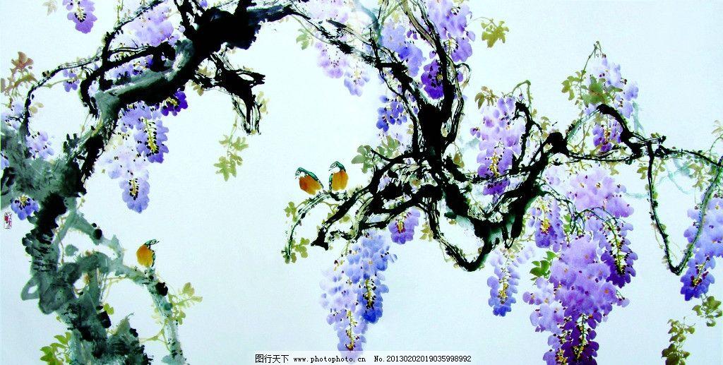 紫藤萝 花鸟图片