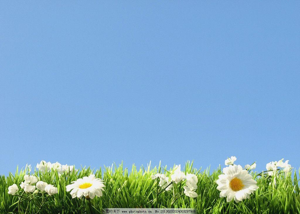 花园背景 花园 花朵 阳光 太阳 蓝天白云 天空 叶子 背景 自然风光