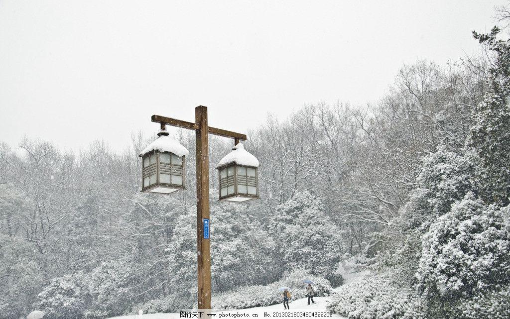 雪景 天空 森林 树木 有空 雪地 雪花 下雪 雪天 积雪 路灯