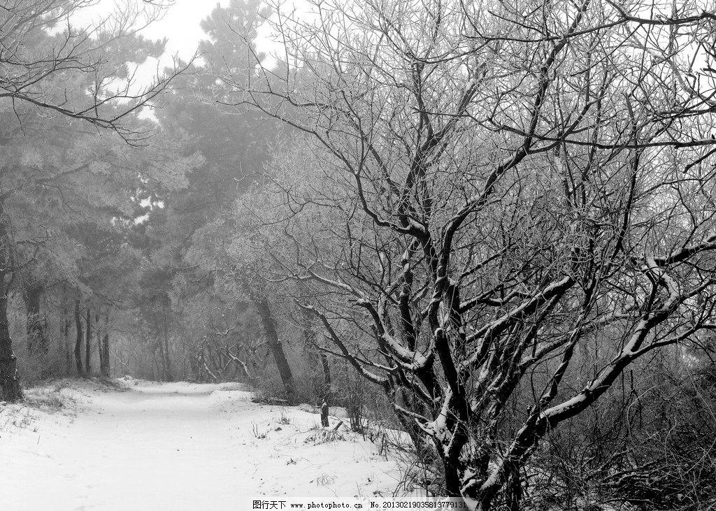 冬日山林 冰雪世界 冰雪树挂 雪景 雪白 摄影