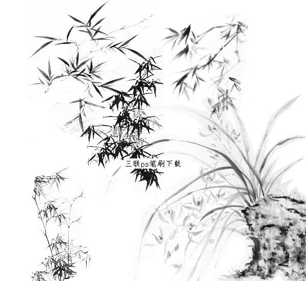 ps 素材 竹子 平面图