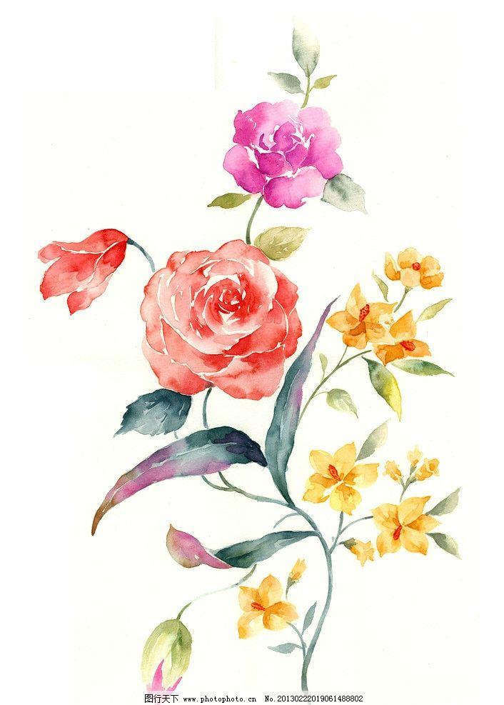 手绘花卉图片图片