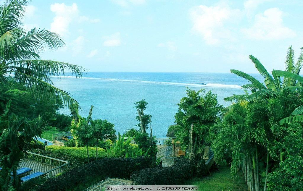 绿树 椰子树 热带植物 外国旅游 塞班岛 天宁岛 海洋海岛 山水风景