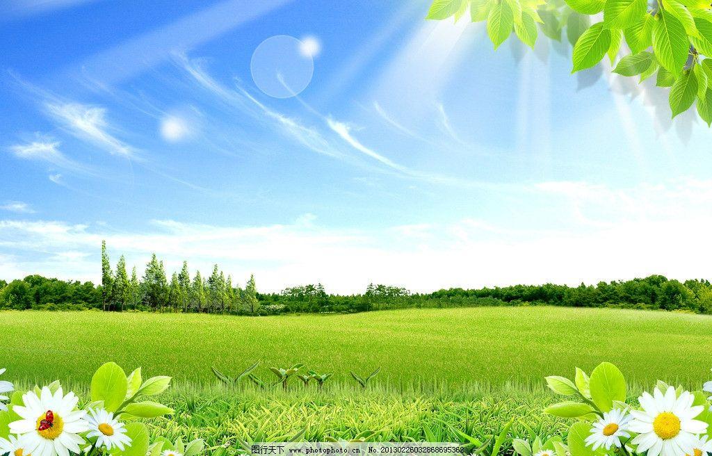 景色 景观 户外 自然 绿色 蓝天 白云 草 草地 绿草地 花 化成 树叶